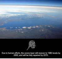 Memes, Layers, and 🤖: Due to human efforts, the ozone layer will recover to 1980 levels by  2050, and will be fully repaired by 2070