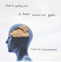 Sorry, Brain, and All: Due to spelling error  all brain replaced with grain  (sorry for invoncenience)