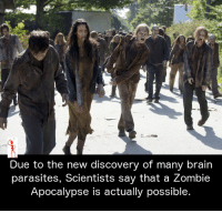 parasitism: Due to the new discovery of many brain  parasites, Scientists say that a Zombie  Apocalypse is actually possible.