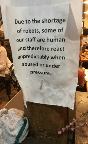 Pressure, Under Pressure, and Human: Due to the shortage  of robots, some of  our staff are human  and therefore react  unpredictably when  abused or under  pressure I am a robot.