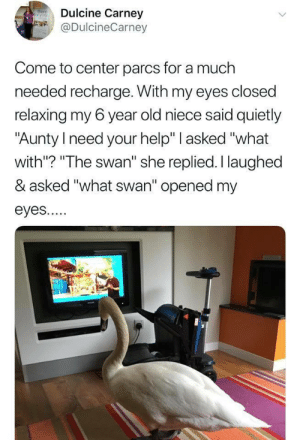 "Help, Old, and Swan: Dulcine Carney  @DulcineCarney  Come to center parcs for a much  needed recharge. With my eyes closed  relaxing my 6 year old niece said quietly  ""Aunty need your help"" asked ""what  with? ""The swan"" she replied. I laughed  & asked ""what swan'"" opened my  eyes..."