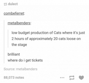 Cats, Budget, and Brilliant: dulect  combeferret:  netalbenders:  low budget production of Cats where it's just  2 hours of approximately 20 cats loose on  the stage  brilliant  where do i get tickets  Source: rnetalbenders  88,073 notes Broadway idea