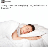 """Bad, Memes, and Sorry: dulect  """"Sorry I'm so bad at replying! I've just had such a  busy day!"""" Pillows are actually great which is why I have 8 of them"""