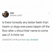 Dogs, Wee, and Scotland: duln  @dylan_bell3  Is there honestly any better feelin than  hearin ur dogs wee paws tappin off the  floor after u shout their name to come  see u? A think not  25/09/2017, 8:46 pm from Ayr, Scotland Truth🐶