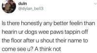 Dogs, Wee, and Name: duln  @dylan_bell3  Is there honestly any better feelin than  hearin ur dogs wee paws tappin off  the floor after u shout their name to  come see u? A think not