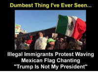 """mexican flag: Dumbest Thing I've Ever Seen...  Illegal immigrants Protest Waving  Mexican Flag Chanting  """"Trump ls Not My President"""""""