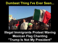 """mexican flag: Dumbest Thing I've Ever Seen...  OOD  Illegal Immigrants Protest Waving  Mexican Flag Chanting  """"Trump Is Not My President"""""""