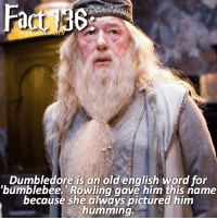 hey! — qotd; spell your favorite food backwards aotd; ydnac hehe: Dumbledore is an old english word for  'bumblebee. Rowling gave him this name  because she always pictured him  humming. hey! — qotd; spell your favorite food backwards aotd; ydnac hehe