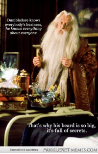 """<p>Dumbledore knows everybody&rsquo;s secrets. <a href=""""http://memes.mugglenet.com/Harry+Potter+Funny+Pics/Dumbledore-knows-everybodys-secrets/2015"""">http://memes.mugglenet.com/Harry+Potter+Funny+Pics/Dumbledore-knows-everybodys-secrets/2015</a></p>: Dumbledore knows  everybody's business,  he knows everything  about everyone.  That's why his beard is so big,  it's full of secrets  Banned in 0 countries  MUGGLENET MEMES.COM <p>Dumbledore knows everybody&rsquo;s secrets. <a href=""""http://memes.mugglenet.com/Harry+Potter+Funny+Pics/Dumbledore-knows-everybodys-secrets/2015"""">http://memes.mugglenet.com/Harry+Potter+Funny+Pics/Dumbledore-knows-everybodys-secrets/2015</a></p>"""