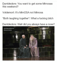 """@whitepeoplehumor is an absolute must follow: Dumbledore: You want to get some Mimosas  this weekend?  Voldemort: It's MimOSA not Mimosa  """"Both laughing together*: What a fucking bitch  Dumbledore: Wait did you always have a nose?  @whitepeoplehumor  @bayranshades @whitepeoplehumor is an absolute must follow"""