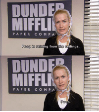 The Office: DUND  MIFFLI  P A P E R  CO M P A  Poop is raining from the ceilings.  MOUND  IFFLM  PAPER C O M P  Poop The Office