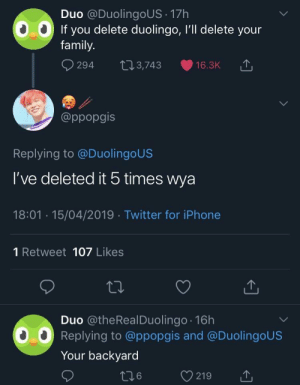 Oh noes: Duo @DuolingoUS 17h  If you delete duolingo, I'll delete your  family.  294 t03,743 16.3K  @ppopgis  Replying to @DuolingoUS  I've deleted it 5 times wya  18:01 15/04/2019 Twitter for iPhone  1 Retweet 107 Likes  Duo @theRealDuolingo 16h  Replying to @ppopgis and @DuolingoUS  Your backyard Oh noes