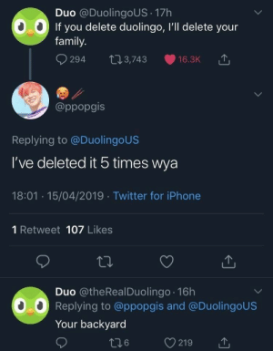 Duolingo: Duo @DuolingoUS 17h  If you delete duolingo, I'll delete your  family.  294 t03,743 16.3K  @ppopgis  Replying to @DuolingoUS  I've deleted it 5 times wya  18:01 15/04/2019 Twitter for iPhone  1 Retweet 107 Likes  Duo @theRealDuolingo 16h  Replying to @ppopgis and @DuolingoUS  Your backyard
