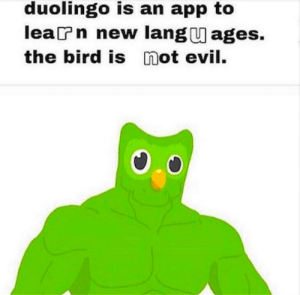Duolingo Is An App To Learn New Languages The Bird Is Not