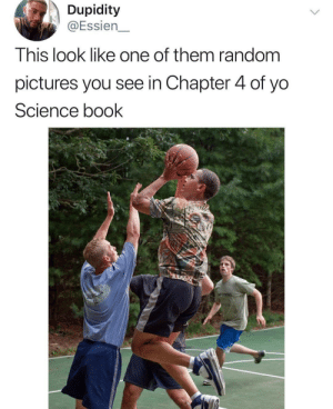 Chapter 4: Checks and Balances by gotmilo11 MORE MEMES: Dupidity  @Essien  This look like one of them random  pictures you see in Chapter 4 of yo  Science book Chapter 4: Checks and Balances by gotmilo11 MORE MEMES