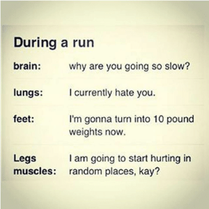 : During a run  brain:  why are you going so slow?  I currently hate you  lungs:  feet:  I'm gonna turn into 10 pound  weights now.  I am going to start hurting in  random places, kay?  Legs  muscles: