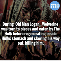 Batman, Memes, and Old Man: During Old Man Logan', Wolverine  was torn to pieces and eaten by The  Hulk before regenerating inside  Hulks stomach and clawing his way  out, killing him. Wish Fox could have done this during Logan!- My other IG accounts @factsofflash @yourpoketrivia @webslingerfacts ⠀⠀⠀⠀⠀⠀⠀⠀⠀⠀⠀⠀⠀⠀⠀⠀⠀⠀⠀⠀⠀⠀⠀⠀⠀⠀⠀⠀⠀⠀⠀⠀⠀⠀⠀⠀ ⠀⠀--------------------- batmanvssuperman xmen batman superman wonderwoman deadpool spiderman hulk thor ironman marvel bluelantern theflash wolverine daredevil aquaman justiceleague homecoming blackpanther wallywest brucewayne redhood avengers zoom oldmanlogan logan silk like4like injustice2