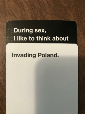 Sex, Dank Memes, and Poland: During sex,  I like to think about  Invading Poland. My gf just played this