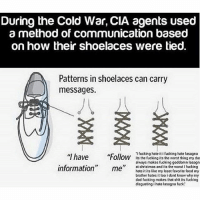 Animals, Christmas, and Dad: During the Cold War, CIA agents used  a method of communication based  on how their shoelaces were tied.  Patterns in shoelaces can carry  messages.  I fucking hate it i fucking hate lasagna  Ollow its the fucking its the worst thing my da  always makes fucking goddamn lasagn  at christmas and its the worst I fucking  hate it its like my least favorite food my  brother hates it too i dont know why my  dad fucking makes that shit its fucking  disgusting i hate lasagna fuck Okay. So in my first dream last night I needed surgery on my of my organs and I CANT remember which one it was it might not have been a real one anyways but I needed surgery because a wolf spider had crawled through the organ and infected it. So I was like freaking out going into surgery and they started like feeding the organ through a machine and I was AWAKE AND I COULD SEE IT AND IT WAS SO SCARY AND I WAS PANICKING and it kind of ended without anything really happening. And then I'm the next dream I don't really remember what the plot was but at the end the town was at this little theater for the high schoolers graduation and after they graduated and whatever my parents were talking to some guy (except my mom wasn't my mom she was Claire from modern family I think) and he started arguing with them about politics and then he started talking about zoo animals and I was like ??? How does that relate? Anyways. My dad gave my sister like 800m dollars in cash right there and she stuck it all in her pocket and I got a bunch of money too but you had to swim through water to get out of the theater and we were freaking out cause we didn't want to get the money wet so we were like awkwardly swimming sideways and at one point I stepped on something in the water and I looked back and some little girl was face down at the bottom of the water and I had just stepped on her and her parents were above her with one of those plastic claw toys and they were grabbing her with it and they were like 'come on sweetie!' Wtf and that was pretty much it