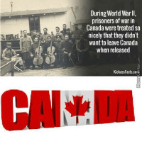 Meanwhile, in Canada...: During World Warll,  prisoners of war in  Canada were treated so  nicely that they didn't  want to leave Canada  when released  KickassFacts cora Meanwhile, in Canada...