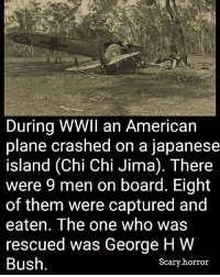 Illuminati, Memes, and American: During WWII an American  plane crashed on a japanese  island (Chi Chi Jima). There  were 9 men on board. Eight  of them were captured and  eaten. The one who was  rescued was George HW  Bush  Scary horror Coincidence? I think not. Illuminati? Confirmed. Hotel? Trivago.