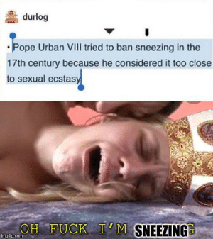 Just a little history meme for y'all: durlog  Pope Urban VIII tried to ban sneezing in the  17th century because he considered it too close  to sexual ecstasy  OH FUCK I'M SNEEZING  imgfip.com Just a little history meme for y'all
