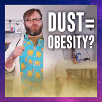 """DUST  OBESITY? Is dust making us fat? Find out on """"Science?"""""""