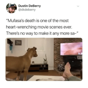 "Memes, Twitter, and Death: Dustin DeBerry  @dkdeberry  ""Mufasa's death is one of the most  heart-wrenching movie scenes ever.  There's no way to make it any more sa-"" THIS IS DEVASTATING 😭(@dkdeberry on Twitter)"