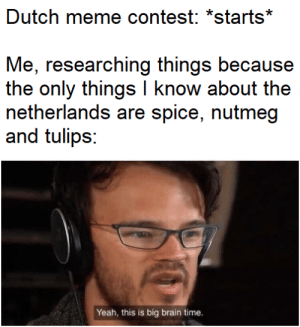 no use Wikipedia, Wikipedia bad: Dutch meme contest: *starts*  Me, researching things because  the only things I know about the  netherlands are spice, nutmeg  and tulips:  Yeah, this is big brain time. no use Wikipedia, Wikipedia bad