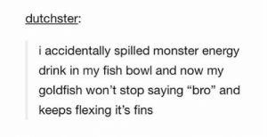"Energy, Goldfish, and Monster: dutchster  i accidentally spilled monster energy  drink in my fish bowl and now my  goldfish won't stop saying ""bro"" and  keeps flexing it's fins Brofish"