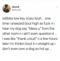 """Bruh, Low Key, and Memes: duunk  @duunk  edibles low key scary bruh .. one  time i sneezed bout high as fuck n i  hear my dog say """"bless u"""" from the  other room n i ain't even question it  i was like """"thank u bud"""" n a few hours  later i'm thinkin bout it n straight up i  don't even own a dog so hol up. 😩"""