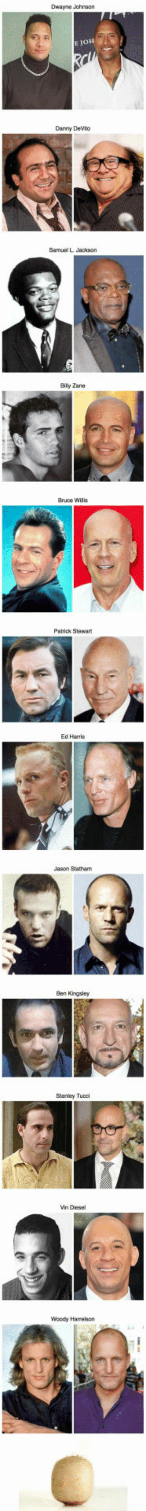 How These 12 Famous Actors Looked Before Going Bald: Dwayna Johnson  E JOH  Darny DeVno  Samual L Jackson  Bily Zane  Patrick Stlewart  Ed Harris  Jason Statham  Ben Kingsley  Stanley Tuoci  n Desel  Woody Harrelson How These 12 Famous Actors Looked Before Going Bald