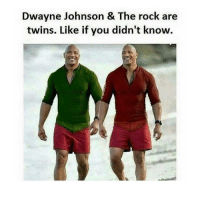 That moment you lose 200+ followers under 4 hours because you posted a horse dick :(: Dwayne Johnson & The rock are  twins. Like if you didn't know. That moment you lose 200+ followers under 4 hours because you posted a horse dick :(