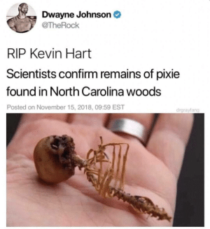 Ouch: Dwayne Johnson  @TheRock  RIP Kevin Hart  Scientists confirm remains of pixie  found in North Carolina woods  Posted on November 15, 2018, 09:59 EST  drgrayfang Ouch