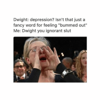 "Ignorant, Lol, and Memes: Dwight: depression? Isn't that just a  fancy word for feeling ""bummed ou""  Me: Dwight you ignorant slut LOL"