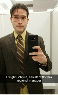 One of the options for my Halloween costume!: Dwight Schrute, assistant (to the)  regional manager One of the options for my Halloween costume!