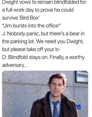 The Office, Work, and Bear: Dwight vows to remain blindfolded for  a full work day to prove he could  survive 'Bird Box'  *Jim bursts into the office*  J: Nobody panic, but there's a bear in  the parking lot. We need you Dwight,  but please take off yourb-  D: Blindfold stays on. Finally, a worthy  adversary. oh dwight, silly goose