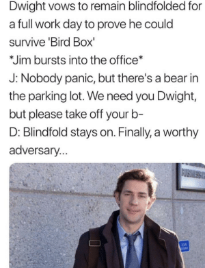 The Office, Work, and Bear: Dwight vows to remain blindfolded for  a full work day to prove he could  survive 'Bird Box'  Jim bursts into the office  J: Nobody panic, but there's a bear in  the parking lot. We need you Dwight,  but please take off your b-  D: Blindfold stays on. Finally, a worthy  adversary. If The Office Aired Today