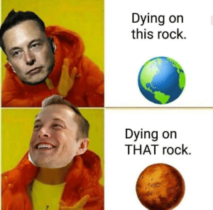 Dank, Memes, and Target: Dying on  this rock.  Dying on  THAT rock. In Musk We Trust by melhn MORE MEMES