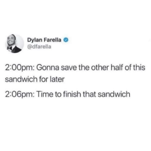 Meirl: Dylan Farella  @dfarella  2:00pm: Gonna save the other half of this  sandwich for later  2:06pm: Time to finish that sandwich Meirl