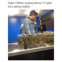 Dylan O'Brien, Memes, and 🤖: Dylan O'Brien buying lettuce l'm glad  he's eating healthy OMG