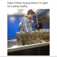 Dylan O'Brien, Memes, and 🤖: Dylan O'Brien buying lettuce l'm glad  he's eating healthy this textpost is lying do you know what he's actually doing? he's buying broccoli