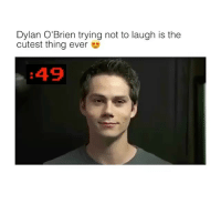 Dylan O'Brien, Memes, and 🤖: Dylan O'Brien trying not to laugh is the  cutest thing ever  :49 I love dis 😍 Follow (@dailygloup) for more!