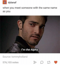 Humans of Tumblr, Alphas, and Alpha: dylanaf  when you meet someone with the same name  as you  I'm the Alpha.  Source: tommyholland  576,103 notes