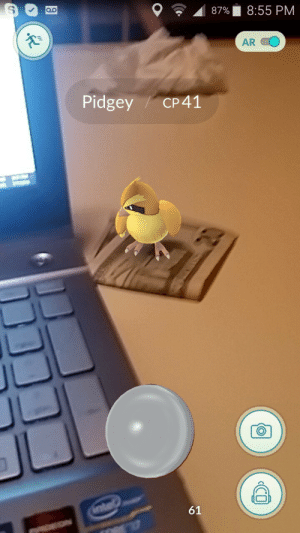 Blessed, Fucking, and Money: e' Al 87% l 8:55 PM  AR  Pidgey/ CP41  61 wayhaught-stuff:  theupstairskid:  pitifulpetal:  oshihidra:  cyberpunkdva:  Reblog Money Pidgey within 30 seconds and you will be blessed with all the rare Pokémon for the next seven days.  update: I opened Go after reblogging this and there was a fucking cp362 Venomoth in my front yard. thank you money pidgey.  I ONLY LIKED THIS AND I OPENED GO AFTER CLOSING TUMBLR AND I CAUGHT A CP350 EEVEE IN MY YARD NOW IM BACK TO REBLOG MONEY PIDGEY  Sure why not? Let's do this  Holy shit I caught a CP588 Golem