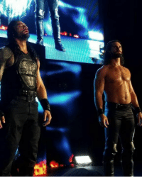 """Apparently Seth Rollins and Roman Reigns had a tag team match together last night and after the match Rollins cut a promo and said """"we will be back""""  - Ivan: E Apparently Seth Rollins and Roman Reigns had a tag team match together last night and after the match Rollins cut a promo and said """"we will be back""""  - Ivan"""