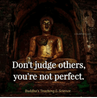 Memes, Science, and Buddhism: e-buddhism com  Don't judge others,  you're not perfect.  Buddha's Teaching & Science