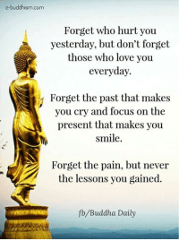 Buddhism: e-buddhism.com  Forget who hurt you  yesterday, but don't forget  those who love you  everyday.  i Forget the past that makes  you cry and focus on the  present that makes you  smile.  Forget the pain, but never  the lessons you gained.  fb Buddha Daily