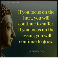 Memes, Buddha, and Focus: e-buddhism com  If you focus on the  hurt, you will  continue to suffer.  If you focus on the  lesson, you will  continue to grow.  fb Buddha Daily Sleepwalkers Awaken rp @tristatemedia 4biddenknowledge