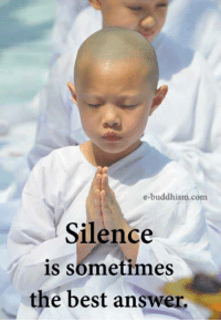 Buddhism: e-buddhism com  Silence  is sometimes  the best answer.